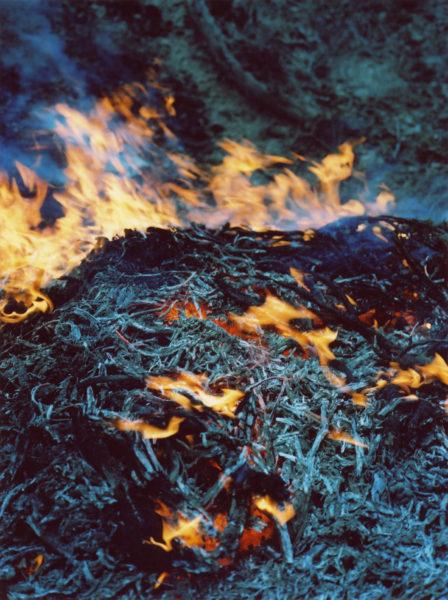Fire, 2012, C-print, 57 X 76 cm, Edition of 3 + 2AP - © Vincent Delbrouck