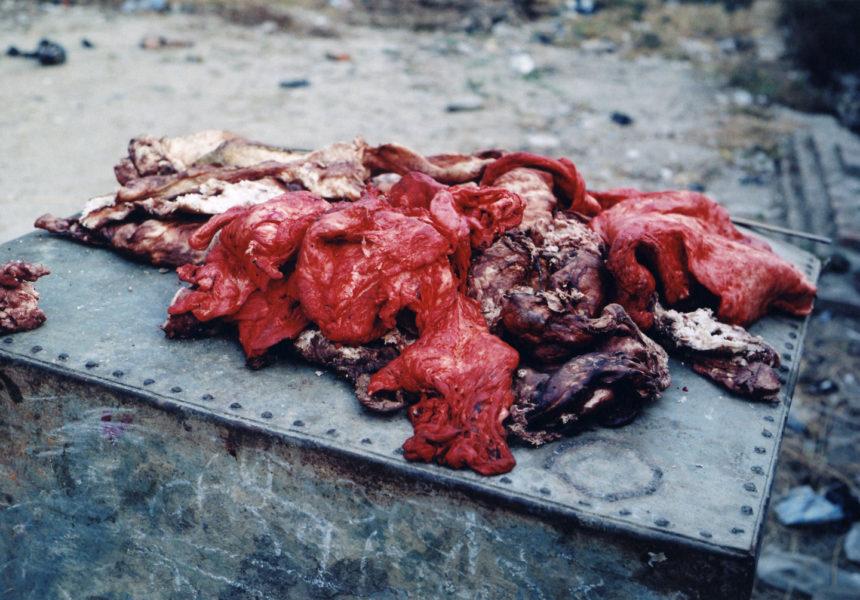 Meat, 2009, C-print, 52 X 78 cm, Edition of 5 + 2AP - © Vincent Delbrouck